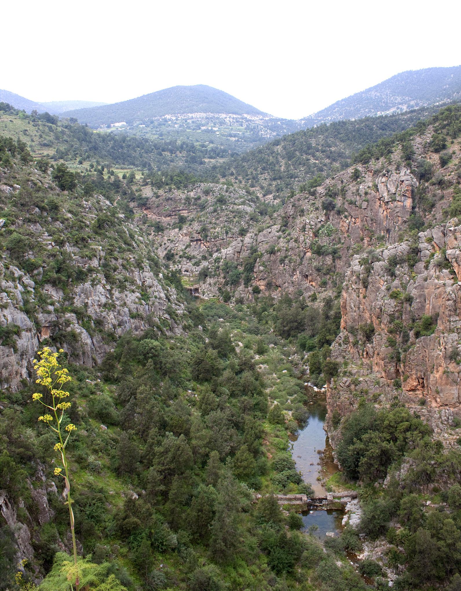Beni Snassen Landscape - 1