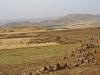 Agricultural Landscapes - 1