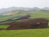 Agricultural Landscapes - 13 Farmland Scape 20090325