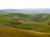 Agricultural Landscapes - 2