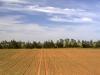 Agricultural Landscapes - 4