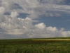 Agricultural Landscapes - 6