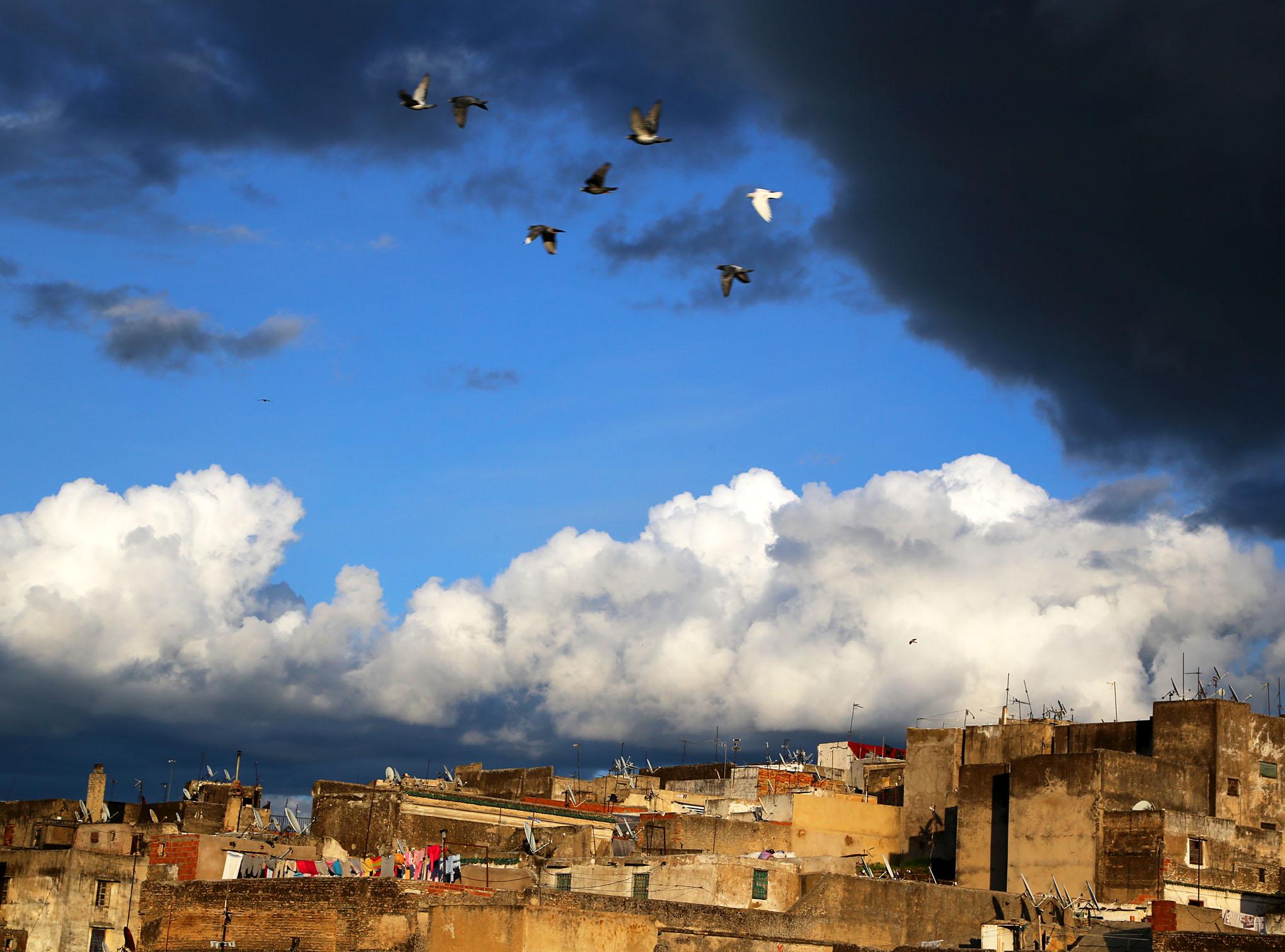 Fez Medina From Dar Balmira's Roof Deck - 10