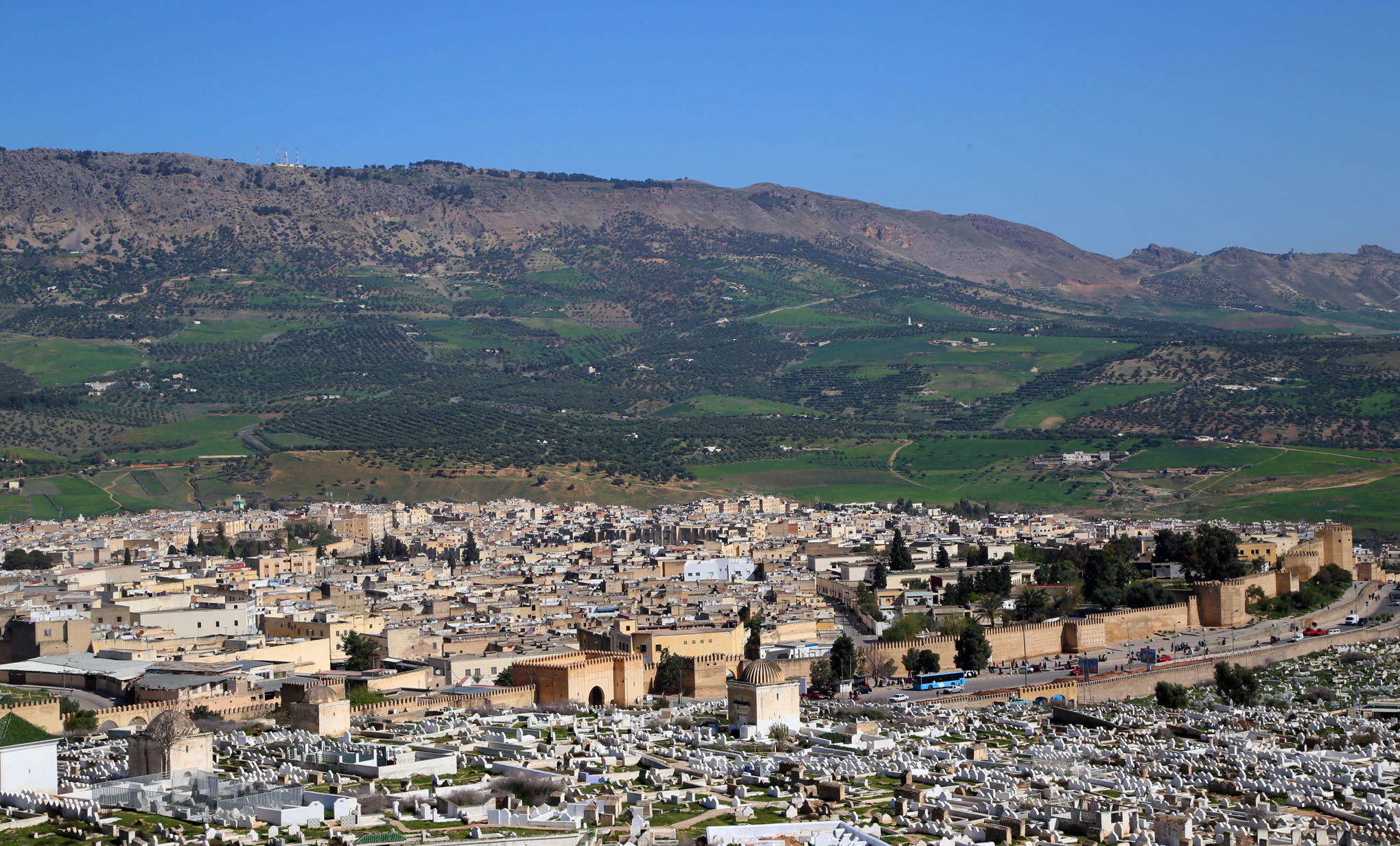 Fez Medina in Perspective - 12