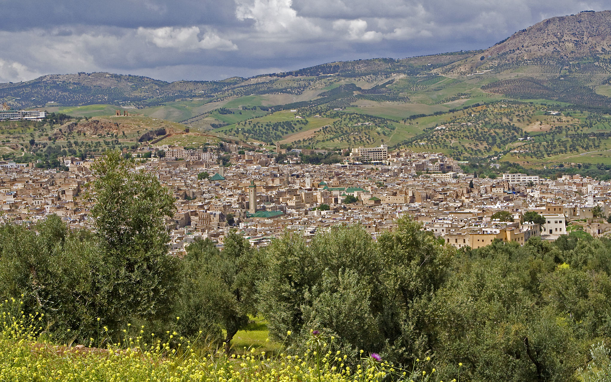 Fez Medina in Perspective - 2