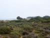 Landscapes: Mediterranean Coast Between Saida and Al Hociema - 6