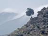 Landscapes: Mediterranean Coast Between Saida and Al Hociema - 3