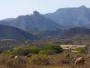 Landscapes: Mediterranean Coast Between Saida and Al Hociema - 2