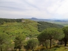 Landscapes: Mediterranean Coast Between Saida and Al Hociema - 8e