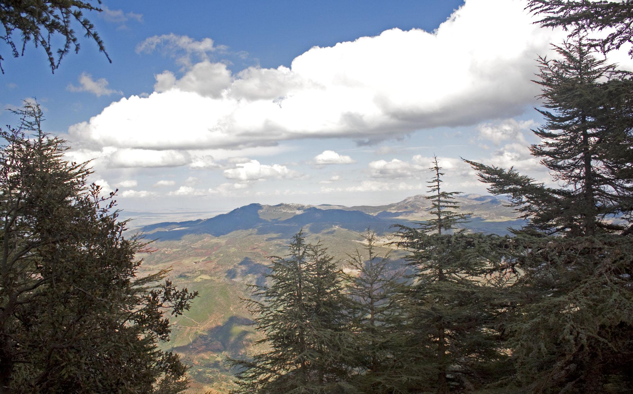 Mt. Tazzeka - 4
