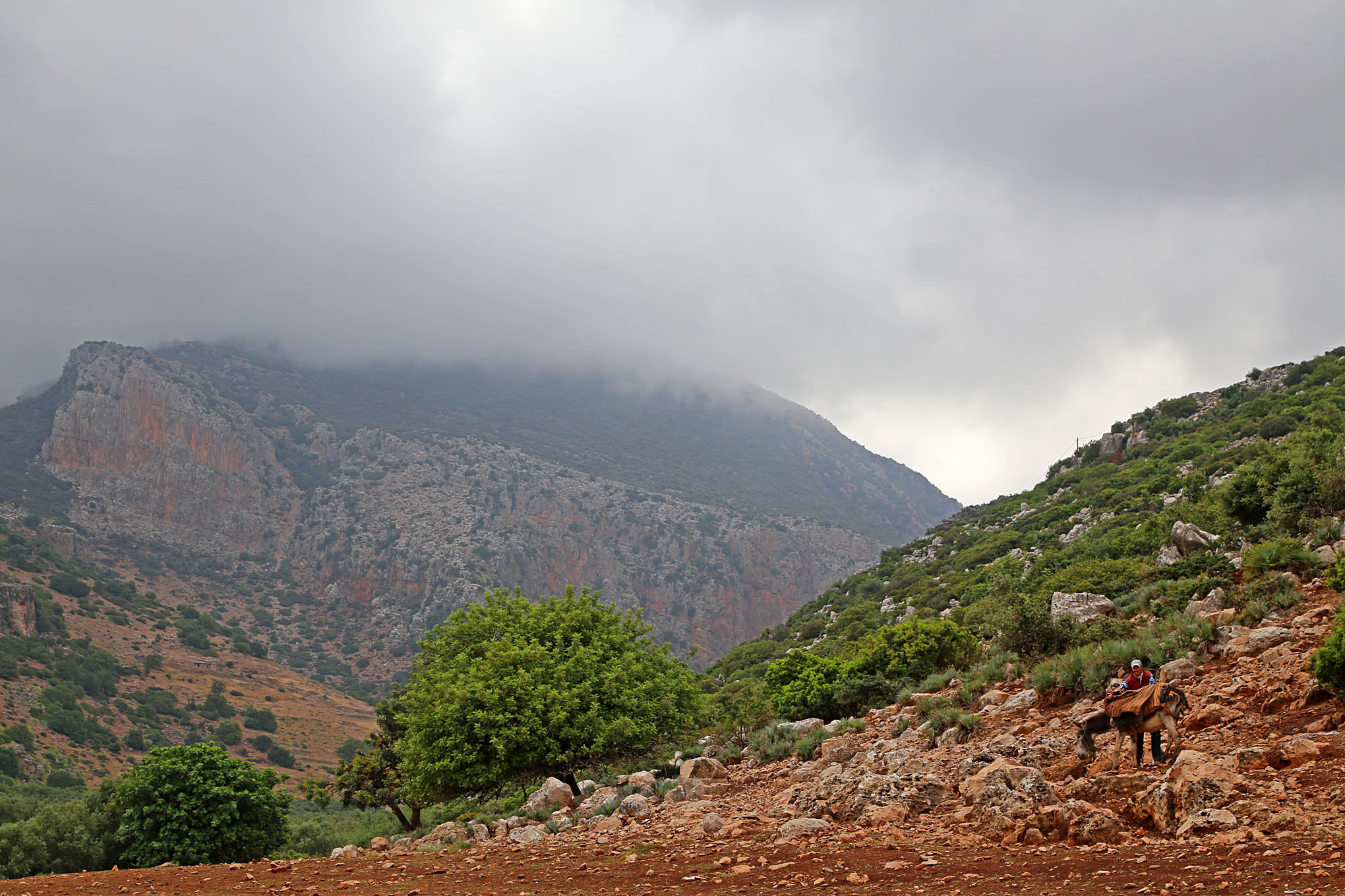 High Atlas Region West and South of Beni Mellal - 4