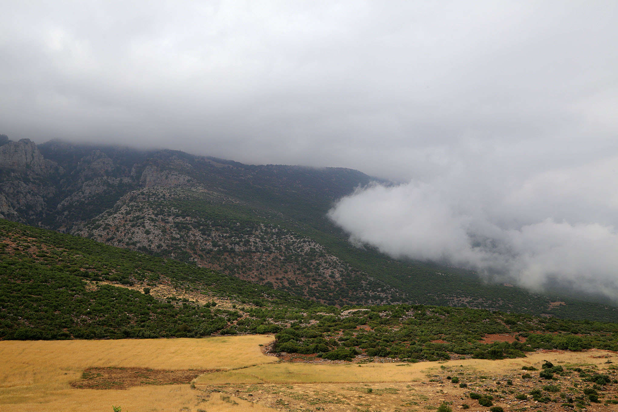 High Atlas Region West and South of Beni Mellal - 5