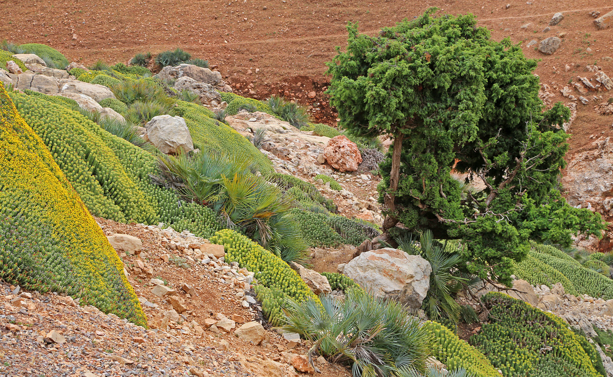 High Atlas Region West and South of Beni Mellal - 9