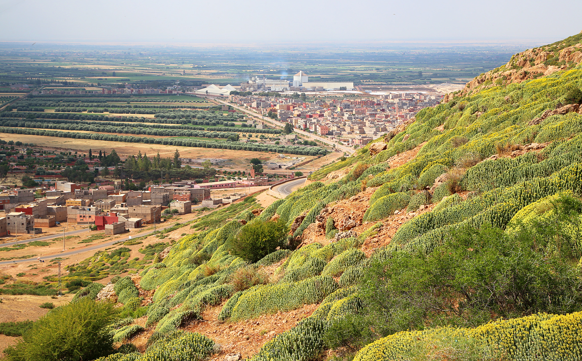 High Atlas Region West and South of Beni Mellal - 19