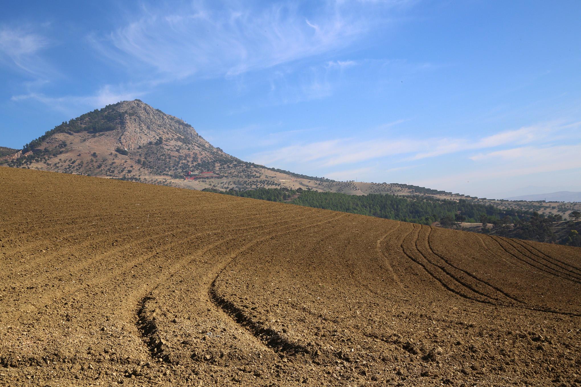 Mount Zalagh - 3a
