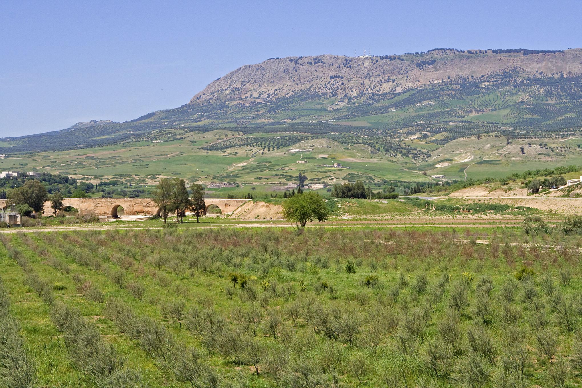 Mount Zalagh - 5