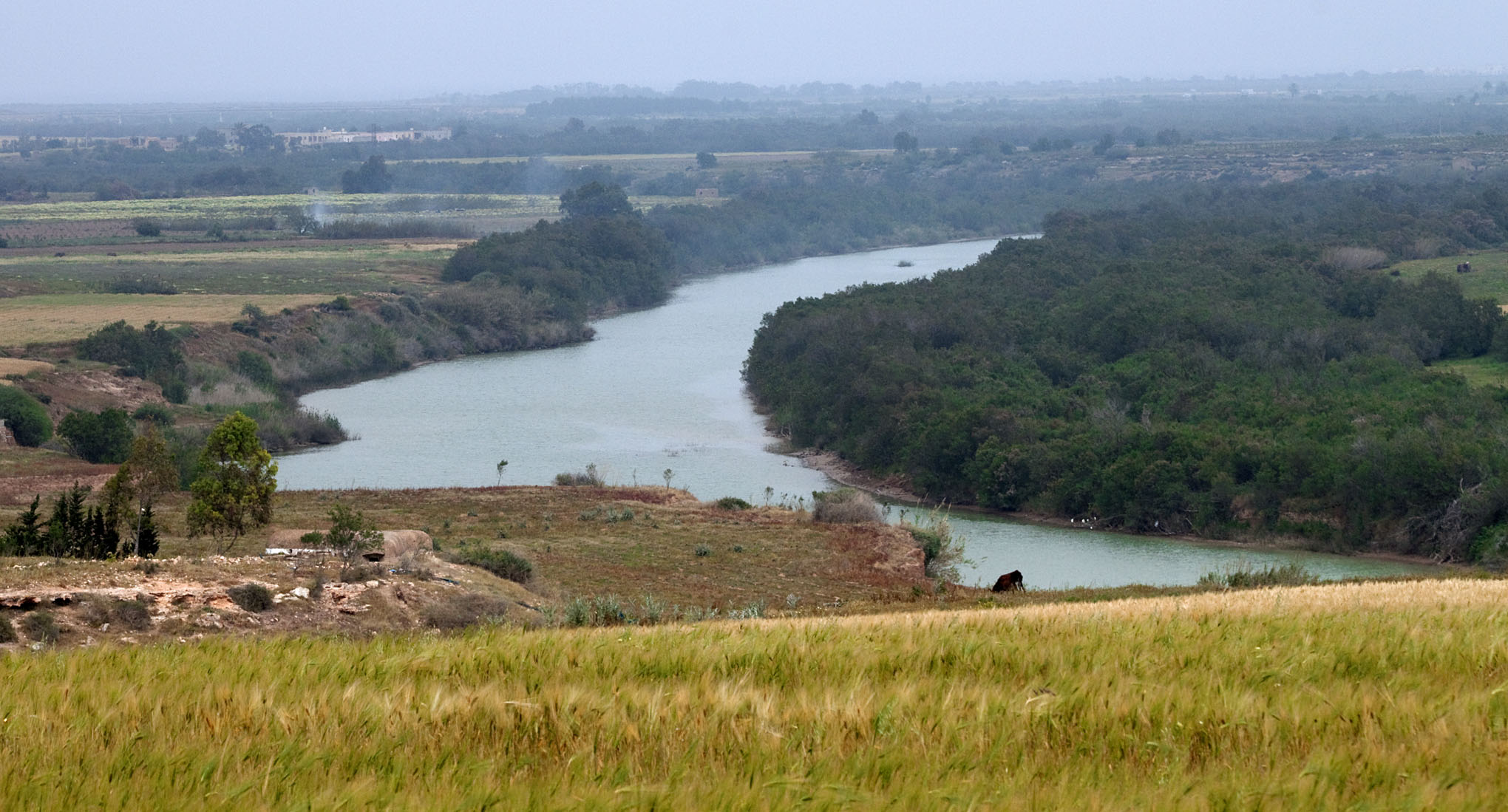 Moulouya River - 3