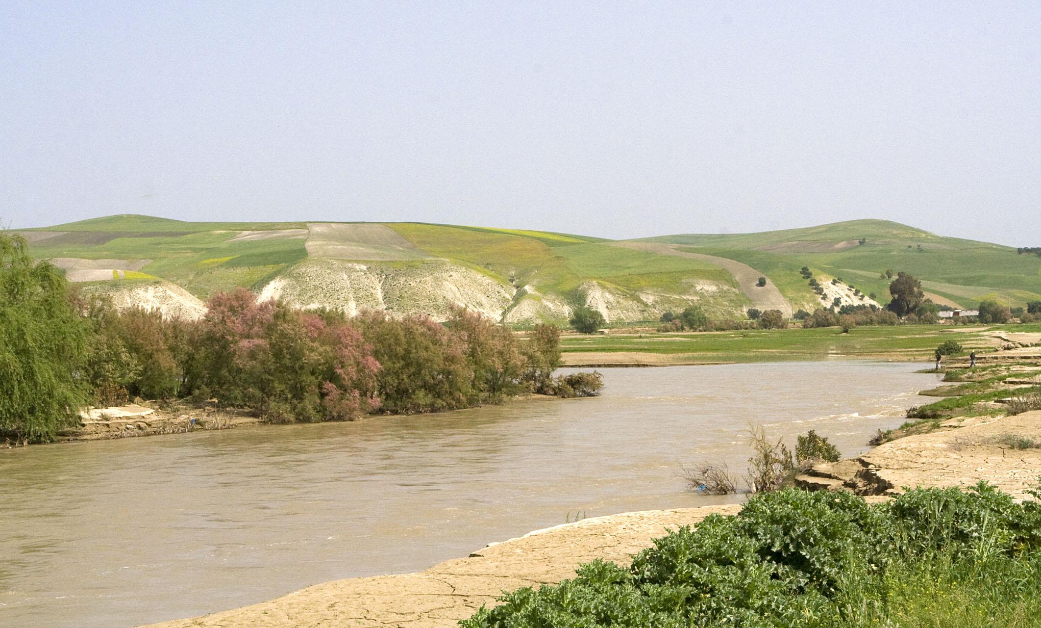 Sebou River - 1