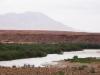 Moulouya River - 8 DSC06761