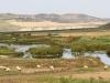 Sebou River - 3